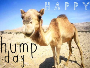 humpday